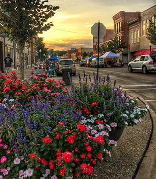 Flowers at the corner of main street
